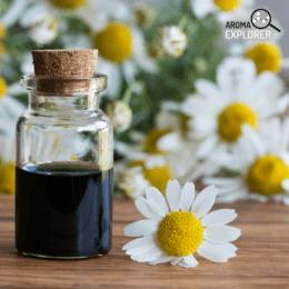 harmančekový olej