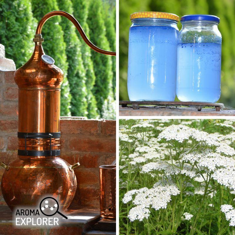hydrolát, esenciálny olej a destilácia
