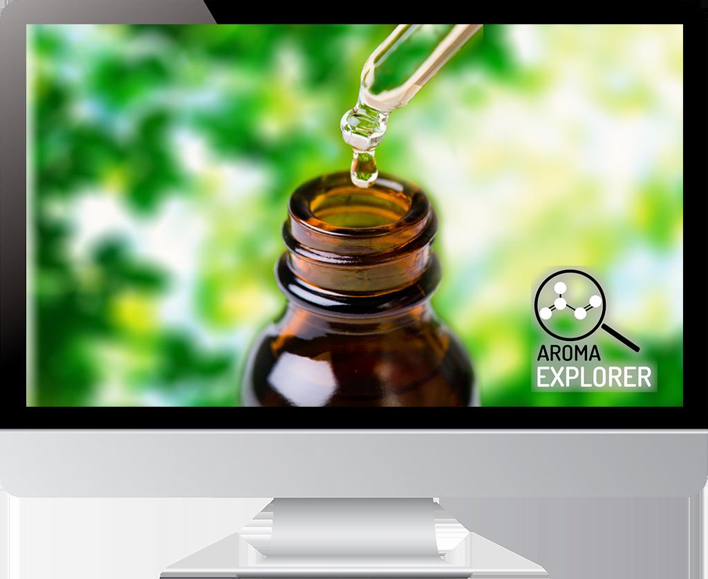 online kurz aromaterapie mini