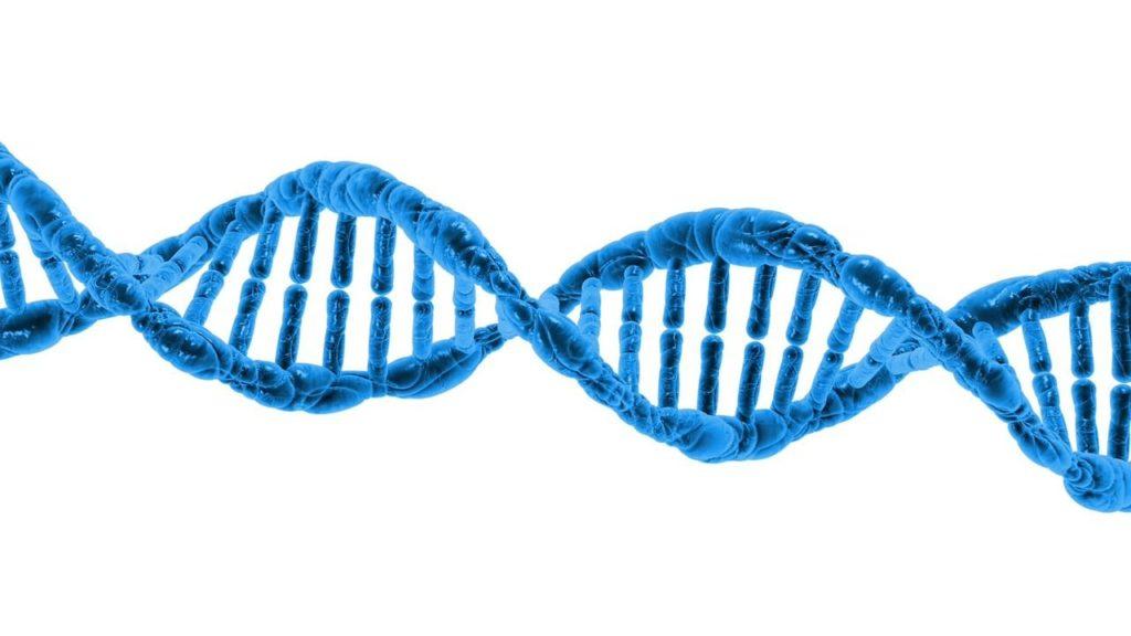 DNA esenciálne oleje